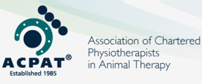 Why use a Chartered Physiotherapist / ACPAT (Veterinary) Physiotherapist?
