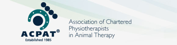 Veterinary Physiotherapy Suffolk